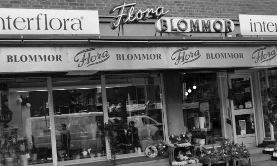 Om Flora blommor